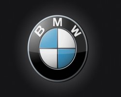 BMW profits fell in car division