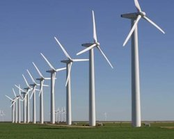 Does wind energy pose a threat to wildlife?