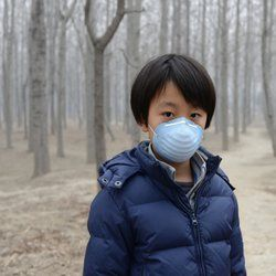 Chinese soil contamination widespread