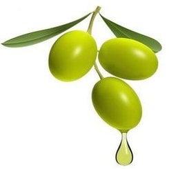 Olive oil consumption