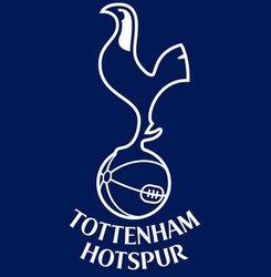 Tottenham Hotspur acquisition by Cain Hoy Enterprises considered