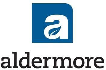 The purpose of aldermore ipo offer