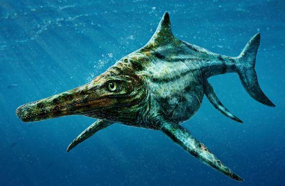 Large prehistoric marine life