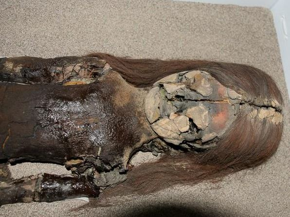 Chinchorro mummy turning to black ooze