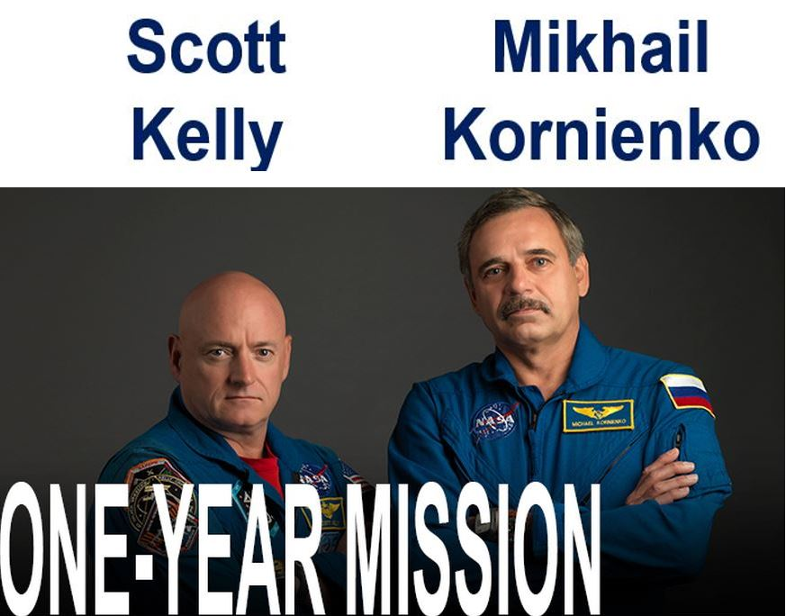 One year in space astronauts