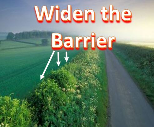 Widen the Barrier English Hedgerows