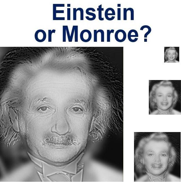 Einstein or Monroe