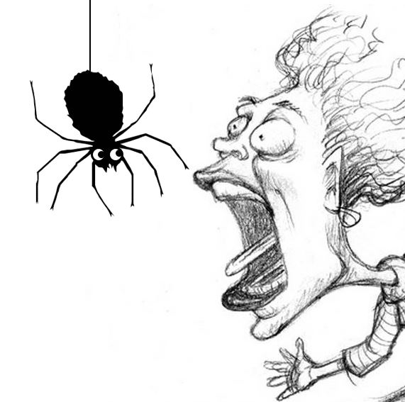 Fear of spiders