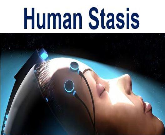 Human Stasis