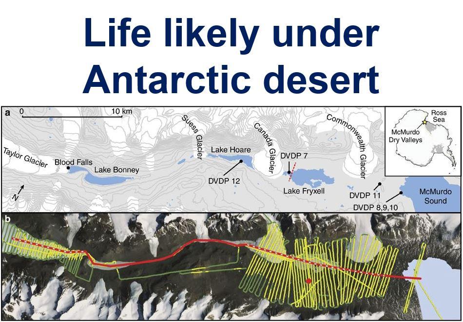 Like likely under Antarctic desert