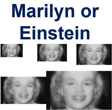 Marylin or Einstein