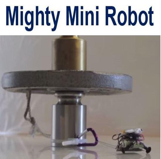 Mighty Mini Robot