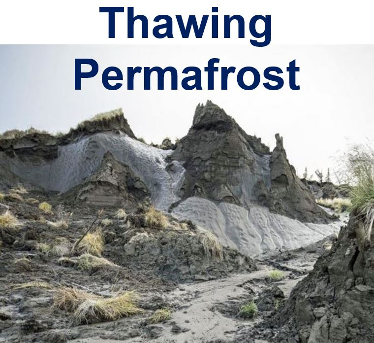 Thawing permafrost Actic