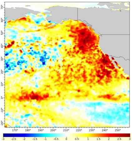 Warm blob in Pacific Ocean