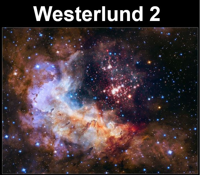 Westerlung 2