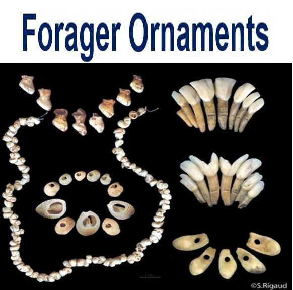 Forager ornaments