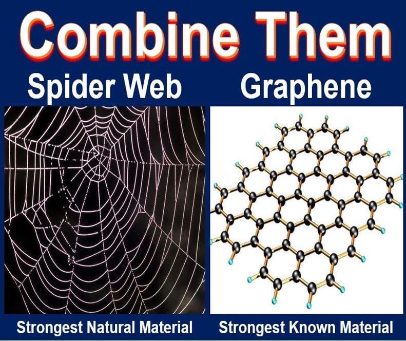 Graphene spider web