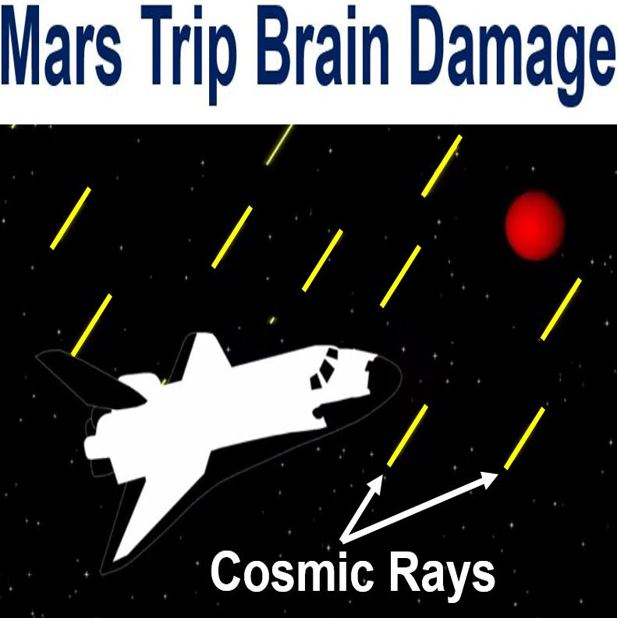 Mars trip brain damage