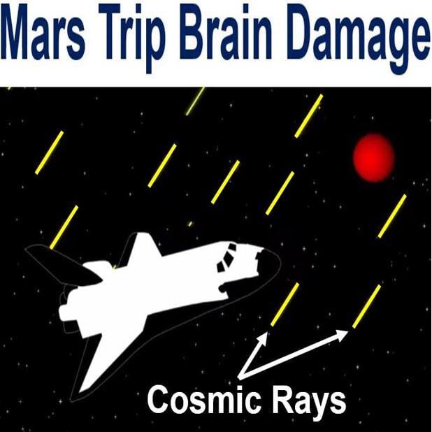 Mars trip brain damage