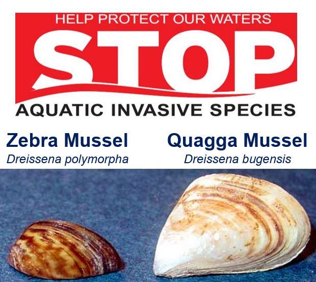 Stop Invasive Species