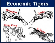 ireland's tiger economy was not driven Ireland's transformation was national in scope how ireland became the celtic tiger sean dorgan knowledge-driven economy.