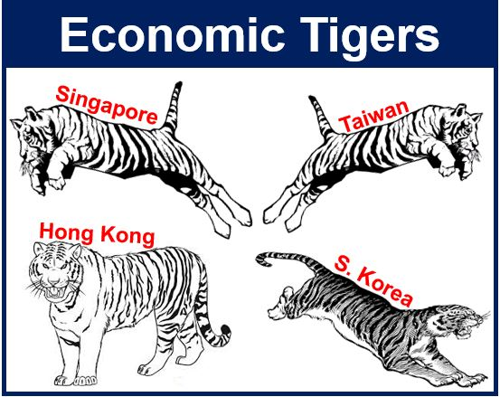 Economic tigers illustration