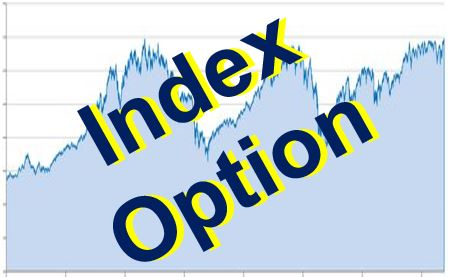 Index Option