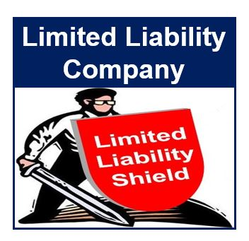 Limited Liability Company thumbnail