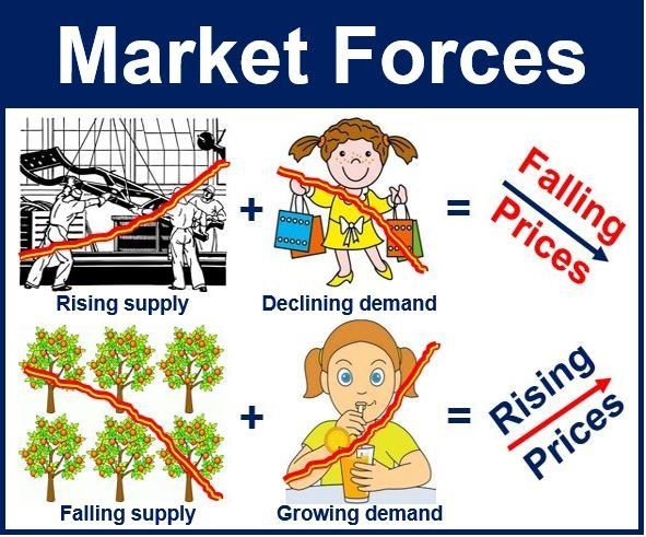 an examination of the market forces of supply and demand The primitive forces of capitalism rule markets like the laws of gravity buyers and  sellers provoke a battle to find a happy medium agreement in.