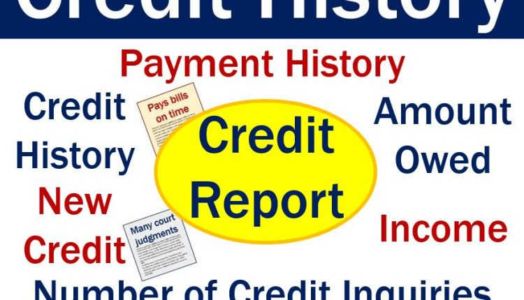 Credit history - image with features of credit report