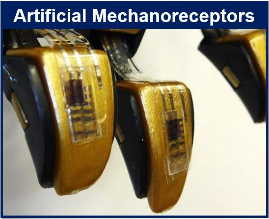 Artificial Mechanoreceptors