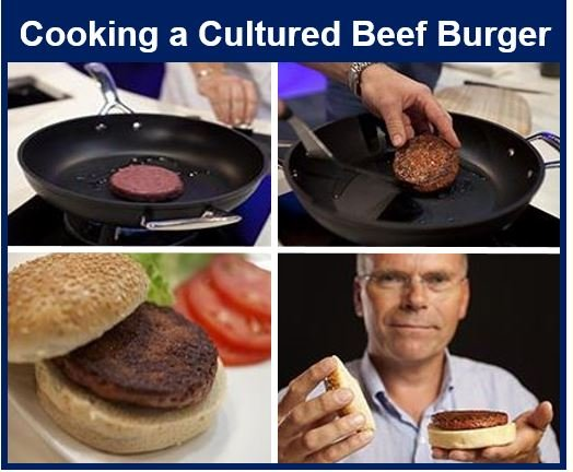 Cooking a lab grown beef burger
