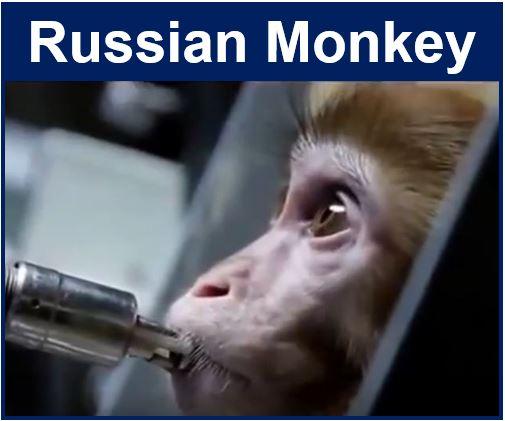 Russian Monkey