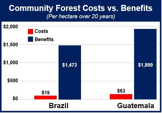 Costs vs benefits forests