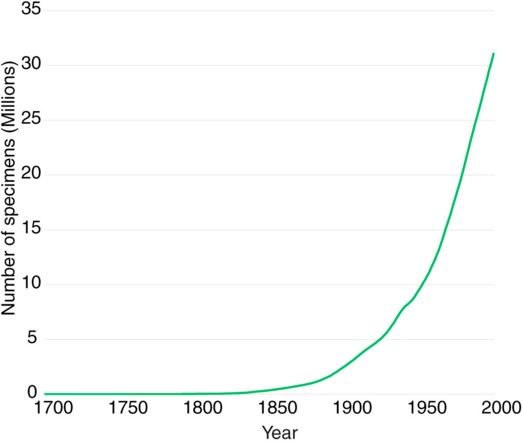 Number of plant species over time