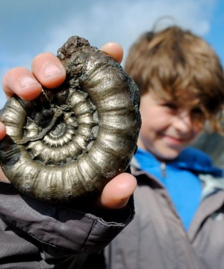 A day out at Charmouth hunting fossils
