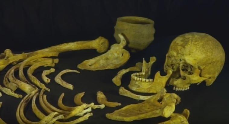 Ancient Irish bones from the Bronze Age