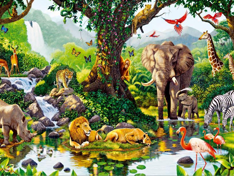 Explosion of animal life
