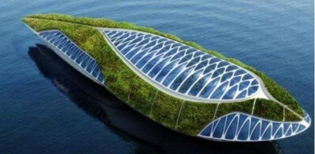 Huge floating garden
