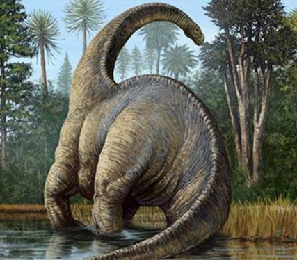 Sauropods were colossal dinosaurs