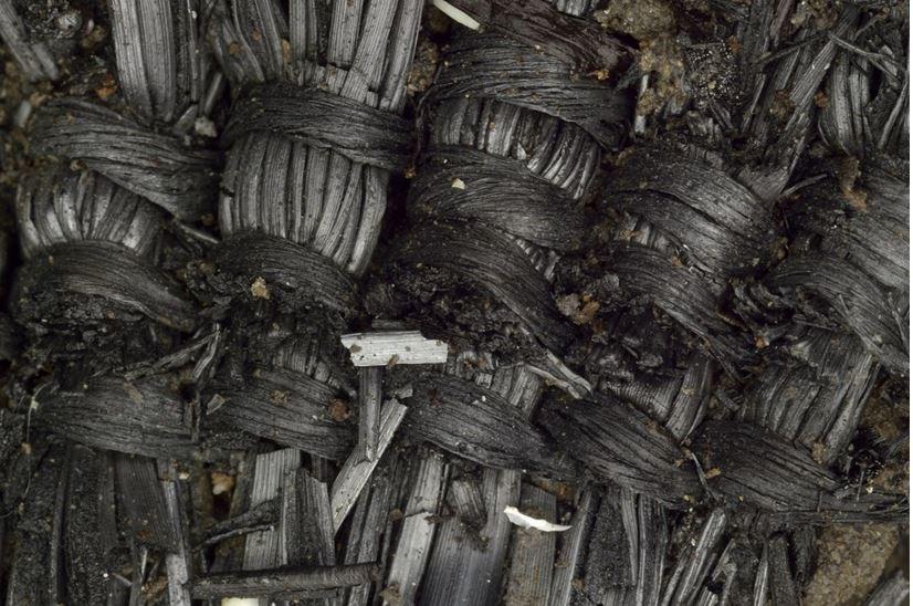 Bronze Age plant fibres