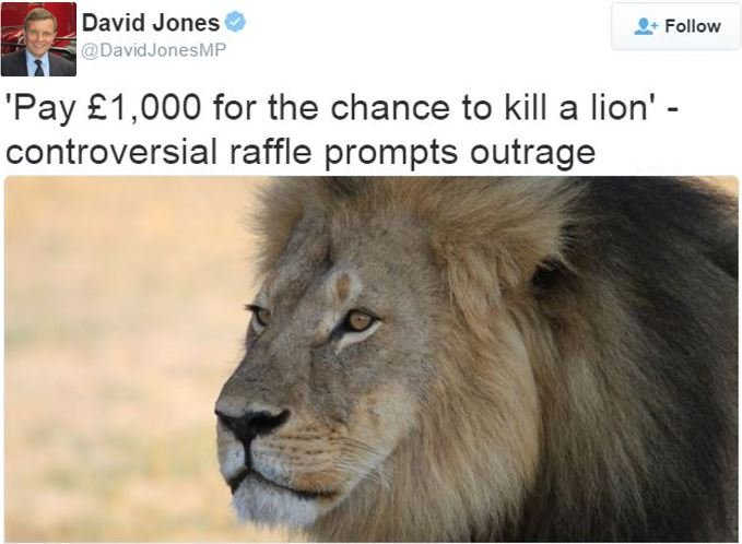 David Jone MP tweets about the lion hunt raffle