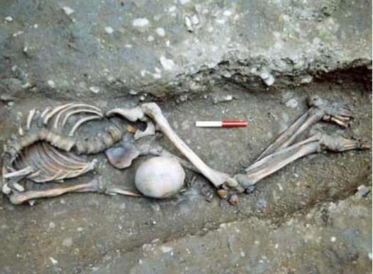 Decapitated Roman age skeleton buried with head