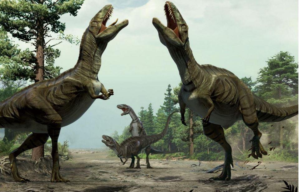 Dinosaurs Love rituals