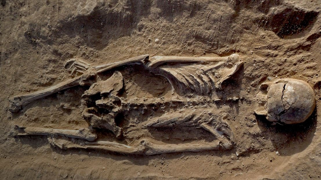 Evidence of prehistoric warfare among humans