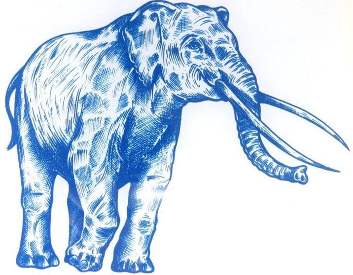 Extinct elephant Palaeoloxodon antiquus or Straight Tusked Elephant