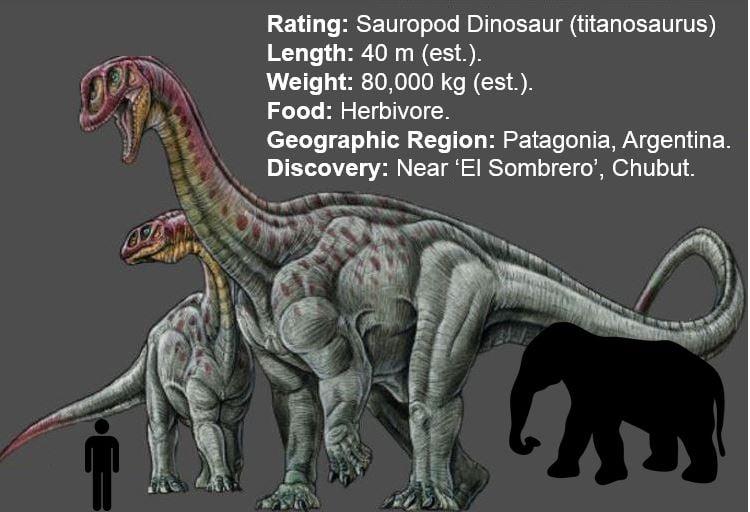 Giant Sauropod Dinosaur