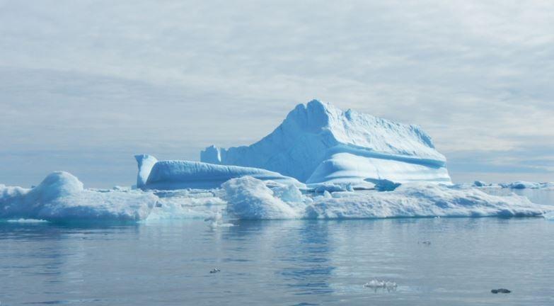 Giant icebergs help slow down global warming
