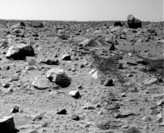 Martian gorilla claim