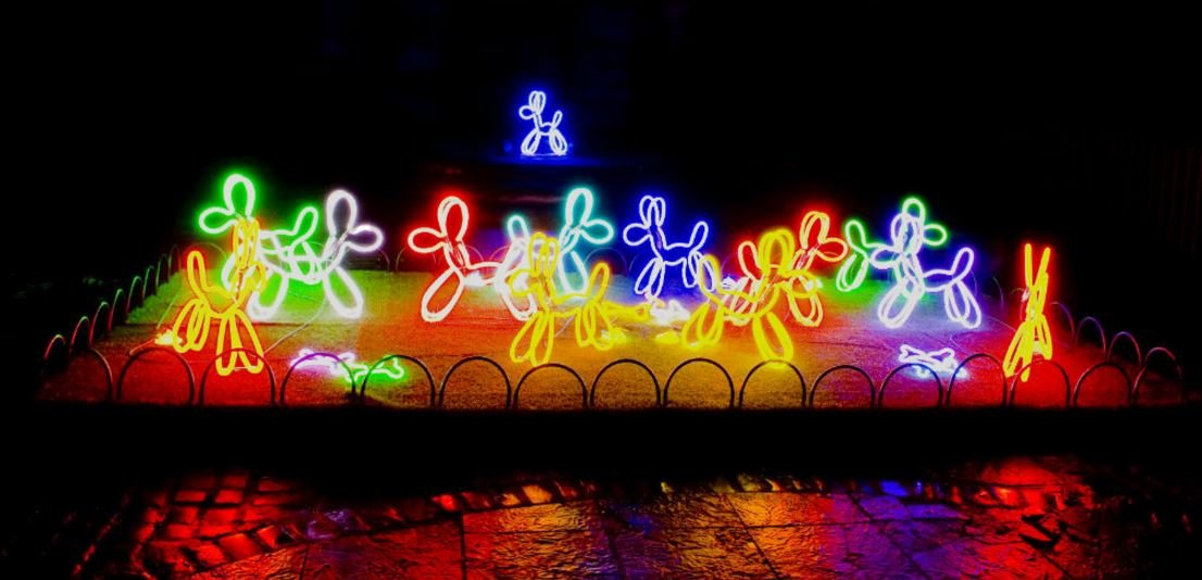 Neon Dogs at Lumiere London